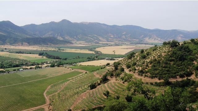 The Colchagua Wine Valley, Chile