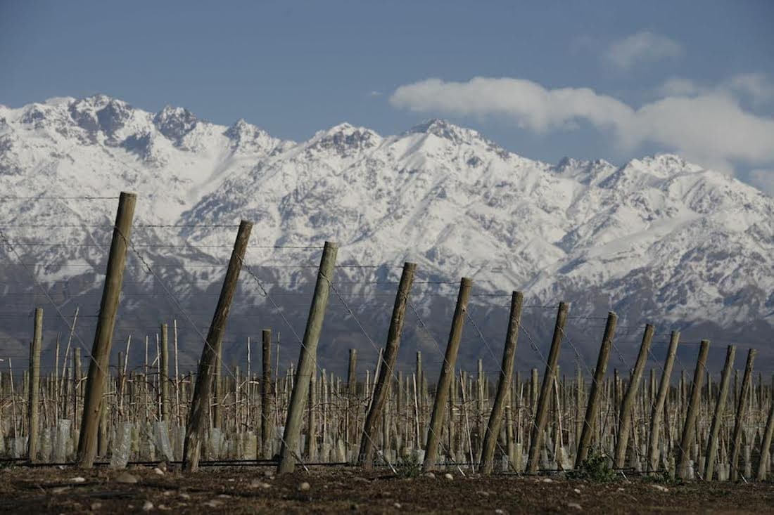 Scenic snow covered mountains overlook the Zuccardi Winery, Mendoza