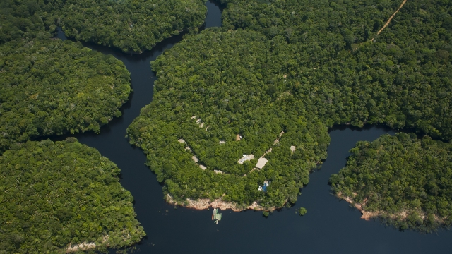 Anavilhanas Lodge aerial view