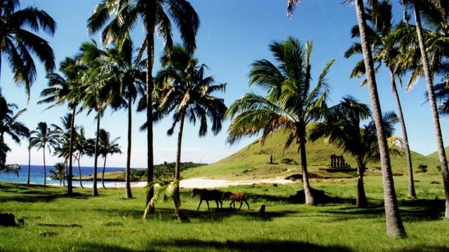 Anakena, Easter Island