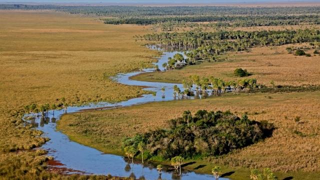 Esteros del Ibera wetlands
