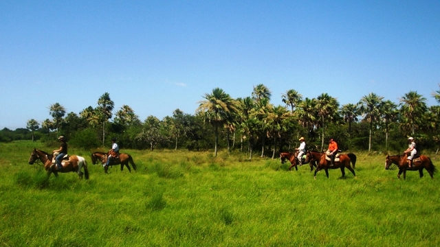 Horseback riding in Esteros del Ibera
