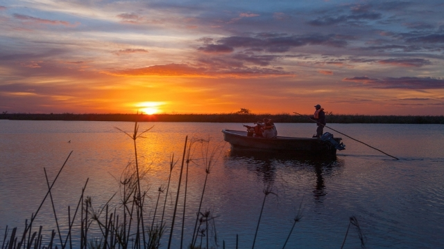 Twilight safari in Esteros del Ibera