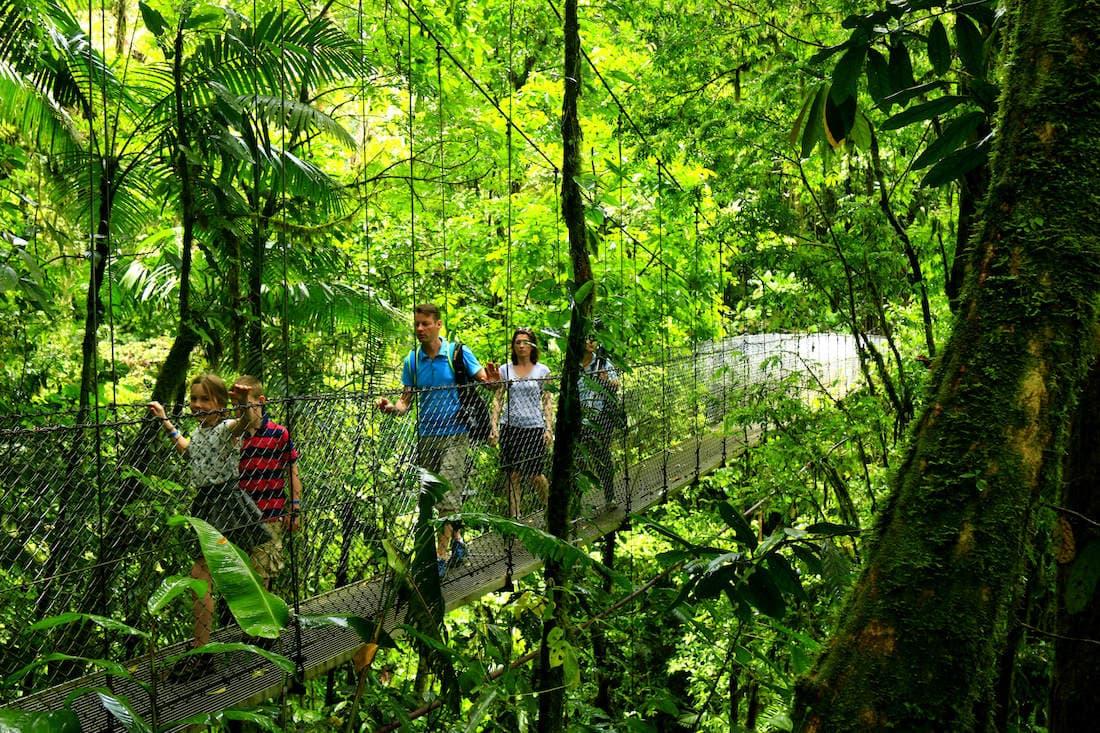 Hanging bridges in Arenal's Rainforest