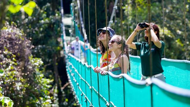 Monteverde Hanging Bridges