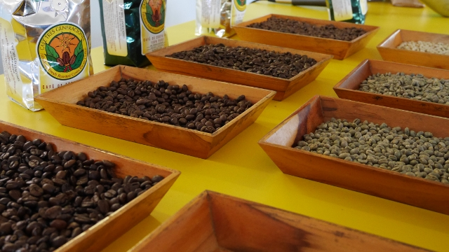 Doka Estate Coffee Tour