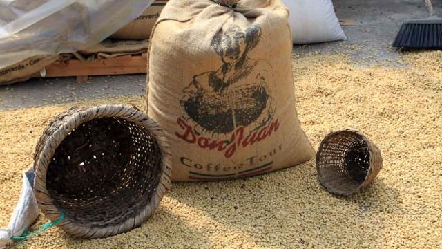 Don Juan Coffee Farm, Monteverde