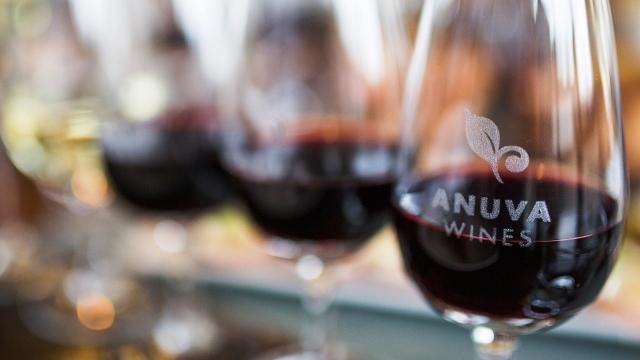 Anuva Wines Wine Tasting