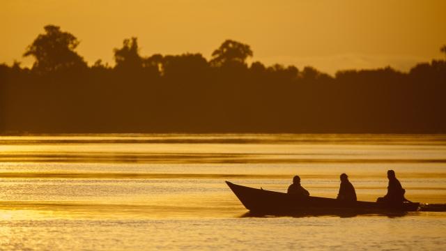 Anavilhanas Lodge, Amazon