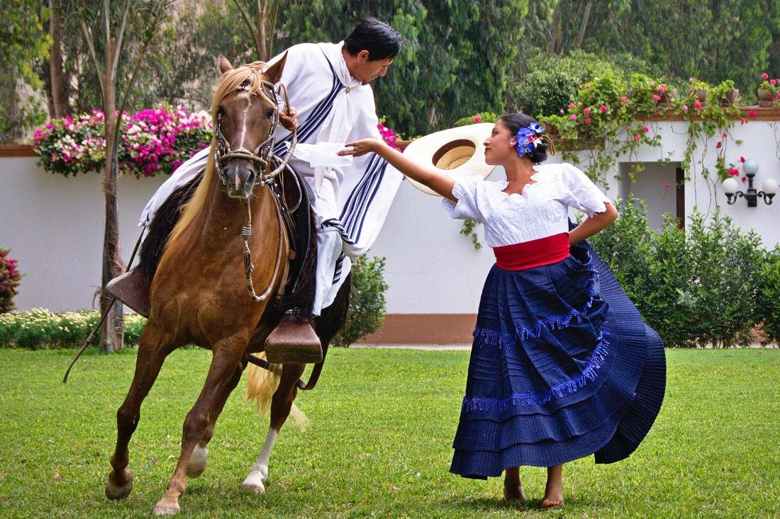 Peruvian Paso Horse Show
