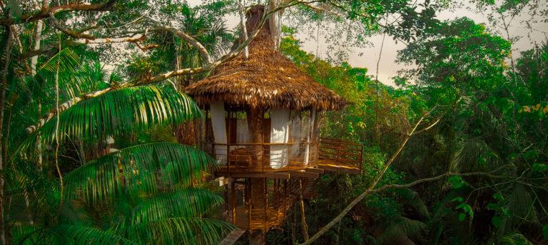 Peru Amazon Treehouse Lodge
