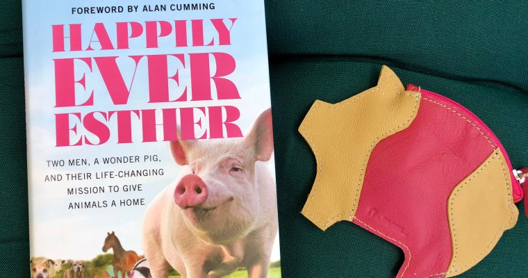 Book Review: Happily Ever Esther by Steve Jenkins and Derek Walter