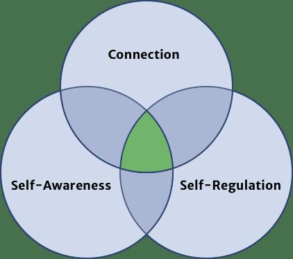 Connection - Self-awareness - Self-regulation