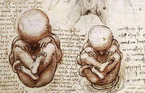 Leonardo da Vinci  Clsse 20 Liceo Scientifico di Rionero