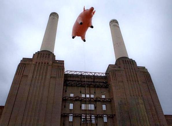 Pink-Floyd-Animals3