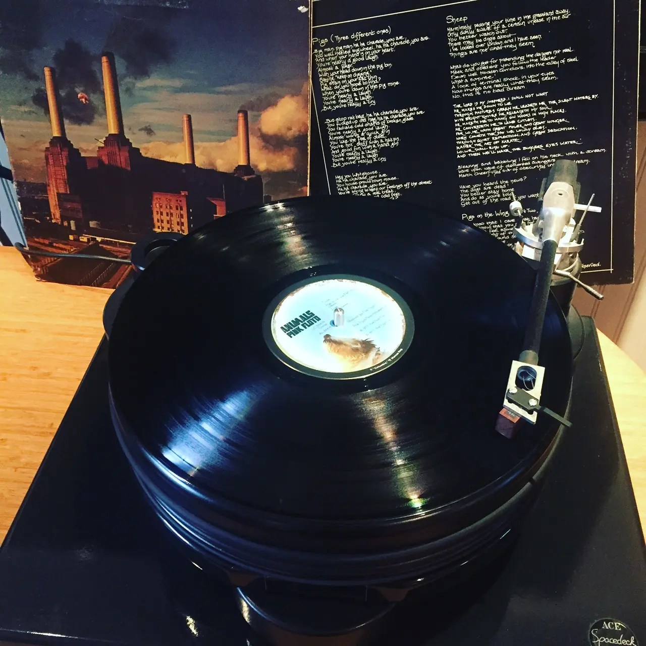 Pink Floyd Animals The Story 40 Years Later Classic Album Sundays