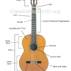 Guitar Parts Diagram Kohler Engine Charging System Classical Part Names