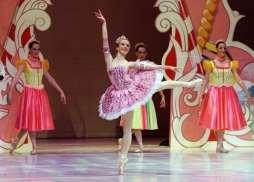 Classical Ballet Tutu - Non Stretch - Sugar Plum