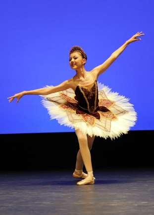 Classical Ballet tutu - stretch tutu - burgandy