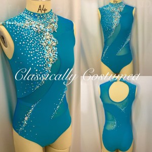 Teal and Silver Dance Costume