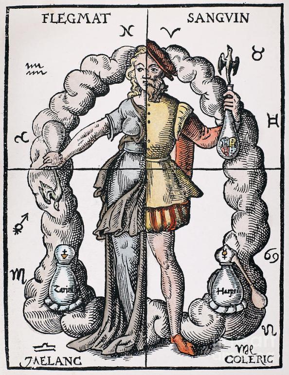 The Four Humors Illustration
