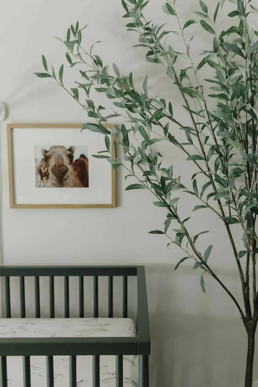 Mary Ann Pickett's Nursery design