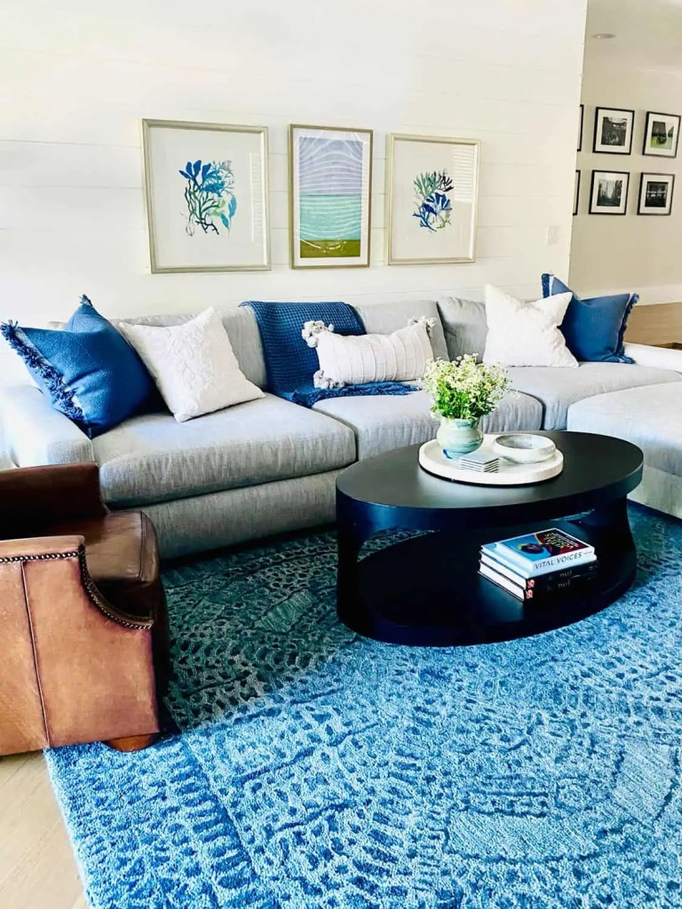 Blue and White Family Room Designed By Mary Ann Pickett