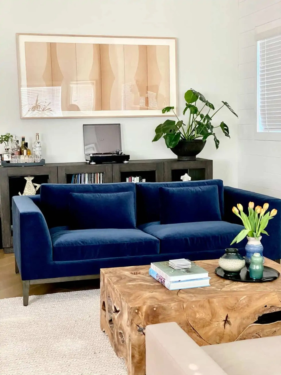 Mary Ann Pickett Designs this Modern Traditional Living Room