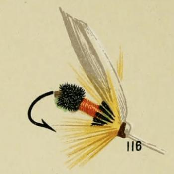 Orange Coachman Trout Fly