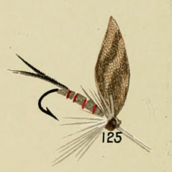 Camlet Dun Trout Fly