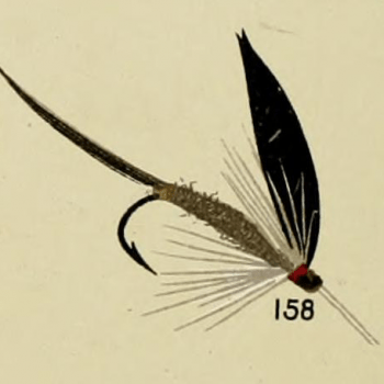 Iron Blue Dun Trout Fly
