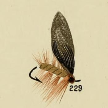 Wickham's Fancy Trout Fly