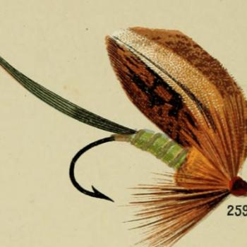 Ondawa Bass Fly