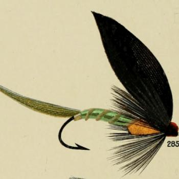 Triumph Bass Fly