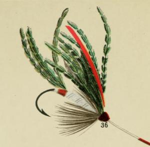 Alexandra Lake Fly