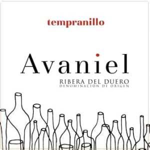 Bodegas Monteabellon 2017 Avaniel Tinto - Tempranillo Red Wine