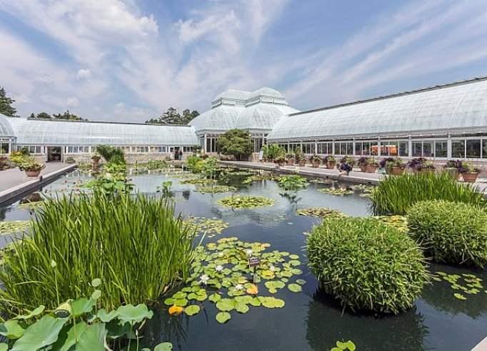 Bronx New York Botanical Garden