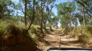 Pic of a track near Old Ambalindum Station, which is NE of Alice Springs