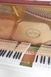 Sauter Resonanzboden Tastatur