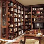 Домашняя библиотека. Особенности освещения