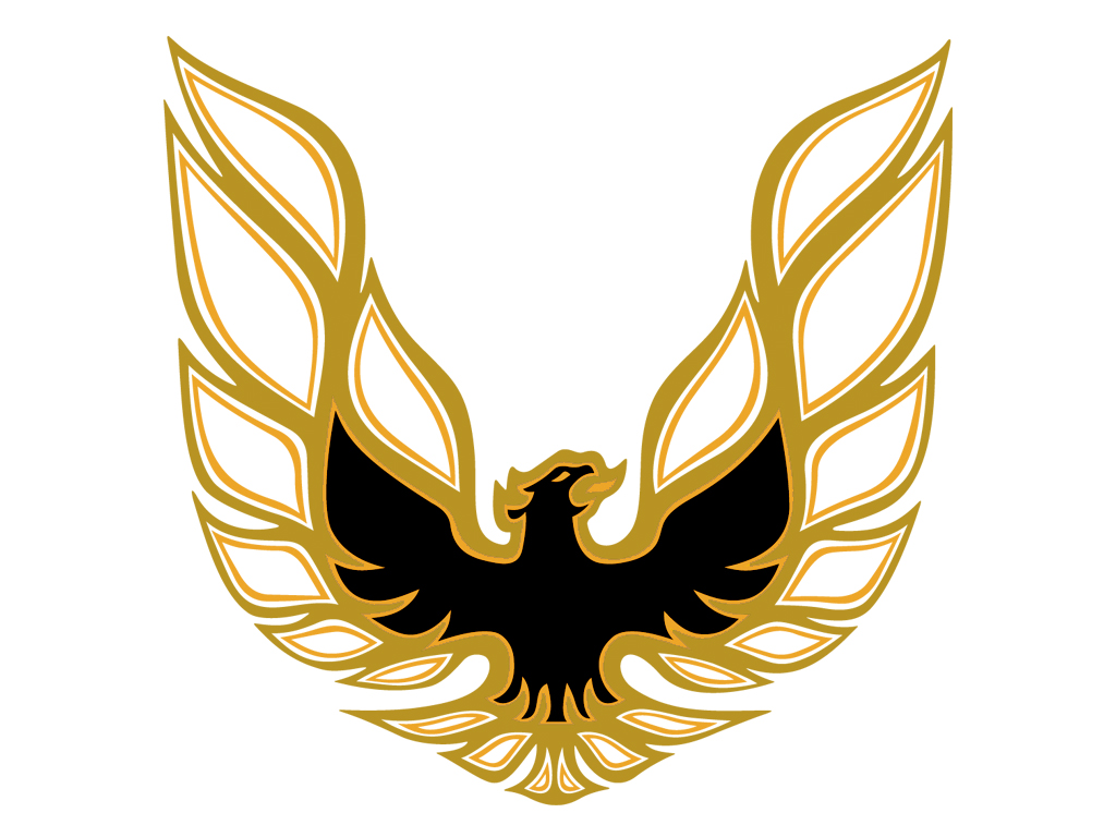 DECAL KIT GOLD CLEAR TRANS AM 78