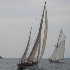 Belle Aventure, Fife Regatta
