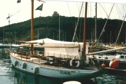 Owner - Torrini