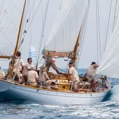 Comet, Les Voiles d' Antibes, 2014 Ph: Guido Cantini / seasee.com