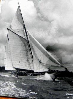 Cynara Beken