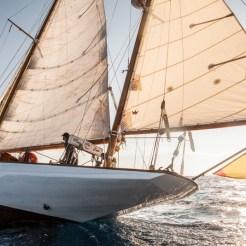 Gladoris II sail