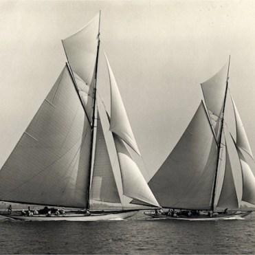 Hispania & Tuiga in race