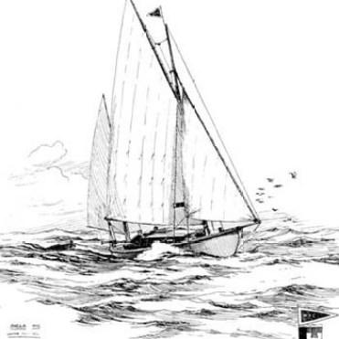 Sheila Drawing