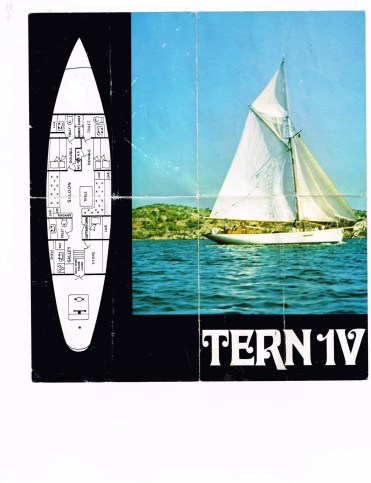 Tern IV_1