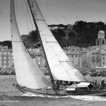 Yanira, Les Dames de Saint Tropez, 2016